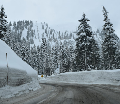 Mt Baker Weather, Ski, and Road Reports from Mt-Baker com