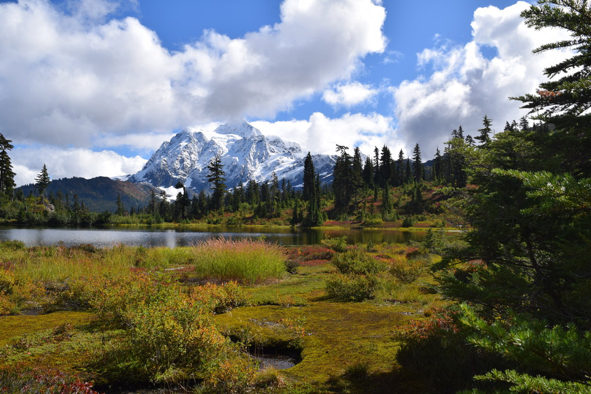 Mt. Shuksan from Heather Meadows